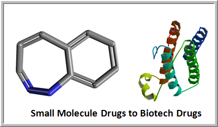 Small Molecule Drugs to Biotech Drugs