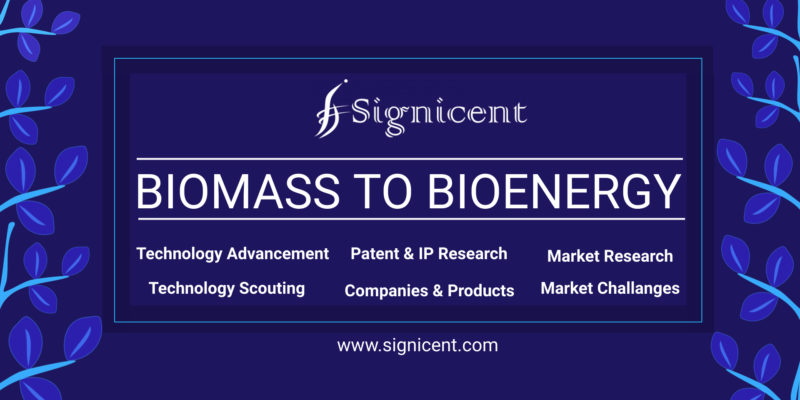 Biomass & Waste-to-Bioenergy Generation Report Sustainable Innovations to Power Global Market Signicent